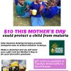 Mother's Day Fundraiser for Mosquito Nets in Kenya